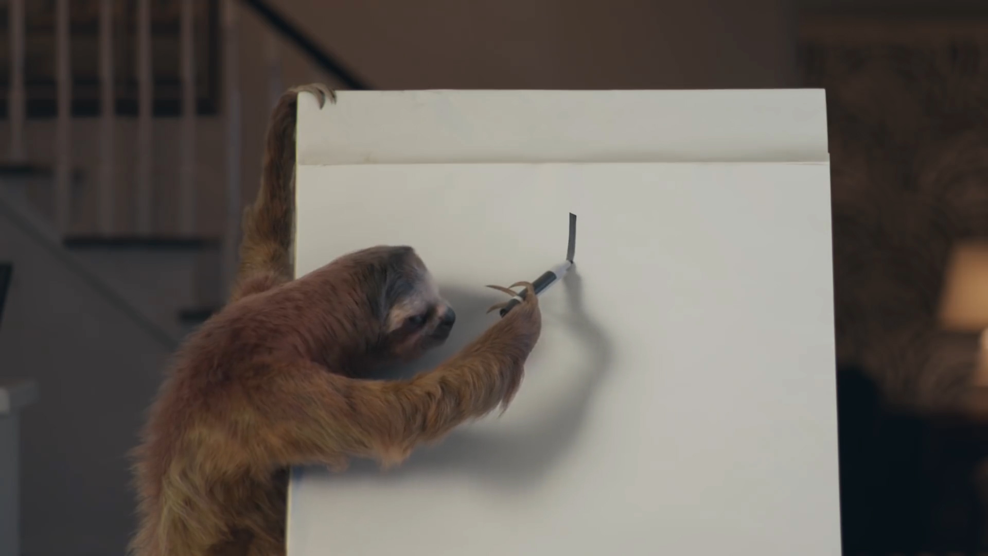 GEICO - Game Night with a Sloth
