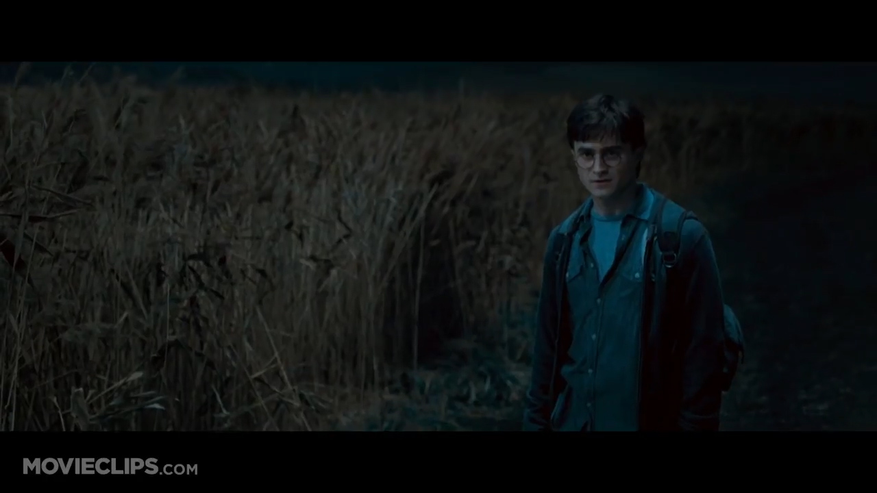 Harry Potter and the Deathly Hallows - Harry and Ron